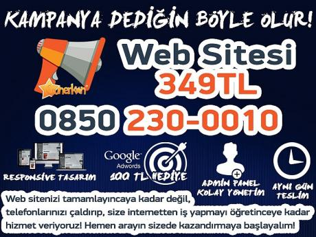 Web Sitesi 349TL